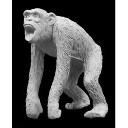 Andrea miniatures,54mm.Monkey.