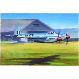 Maquette avion 48e-Hornet F1 Trumpeter.