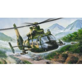Trumpeter 1/48e HELICOPTERE MILITAIRE CHINOIS Z-9G