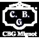 CBG MIGNOT INFANTERIE EMPIRE.